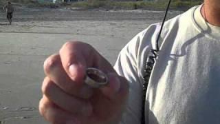 Surfdigger's Tip Clip #1