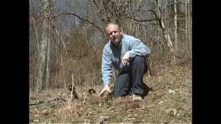 Minelab X-TERRA Series DVD - The Basics of Metal Detecting