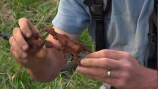"Minelab Detecting: ""Episode 1: The Civil War Uncovered"""